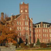 Quincy University, Куинси