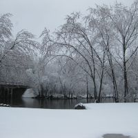 Des Plaines River Trail in the Winter, Либертивилл