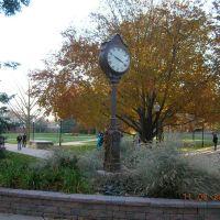 Quad Clock, Нормал