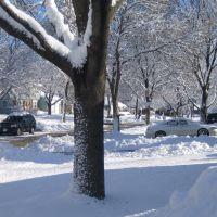 Buffalo Grove, Норт Парк