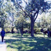 ABBOTT PARK, Норт Парк