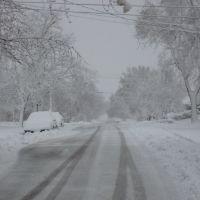 ultima nevada del 2009, Норт-Чикаго