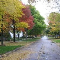 Cherry St - Winnetka-IL-Outono, Нортфилд