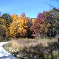 Greenbelt Forest Preserve, Парк-Сити
