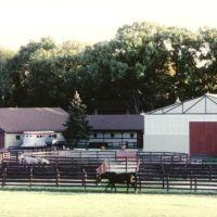 Flying Dutchman Farm, Ривер Гров