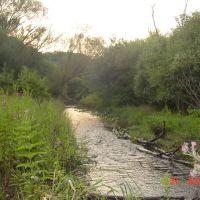 Hidden Waters at the hills (aguas escondidas en los cerros -  De leau dans les collines), Ривер Гров