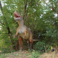 T rex, Риверсид