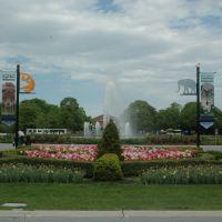 Brookfield Zoo - West Mall, Риверсид