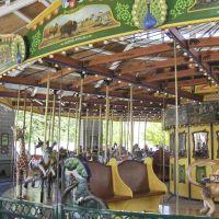 Brookfield Zoo The Carousel, GLCT, Риверсид