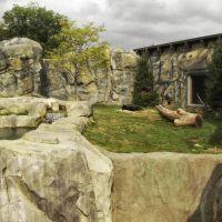 Brookfield Zoo Great Bear Wilderness, GLCT, Риверсид