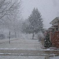 SNOWING, Роббинс