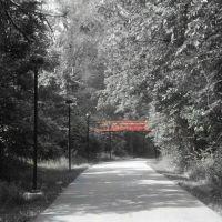 Delight Morris Trail, SIUE, Роксана
