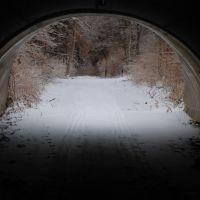 Delight Morris trail, Саут-Роксана