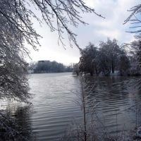 Cougar Lake after an ice storm