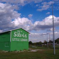 Little League, Силвис
