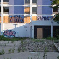 Purple Hotel courtyard, Скоки