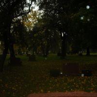 Cemetery 12, Стикни
