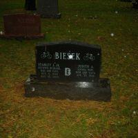 Cemetery 14, Стикни