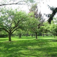 Proksa Park - 18, Стикни