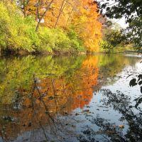 Autumn in Crystal Lake Park, Урбана