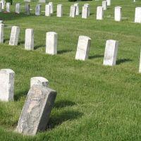 Rose Lawn Graveyard, Урбана