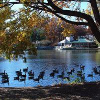 Crystal Lake Park, Урбана