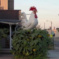 Chicken Statue (North Galena Avenue @ West Douglas Street), GLCT, Фрипорт