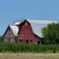Red Barns Looking NW, Черри
