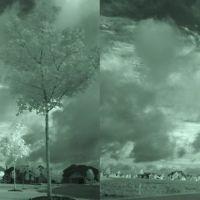 DSC034273dn NIRX-3D W stereoview -  6/23/07, Брук