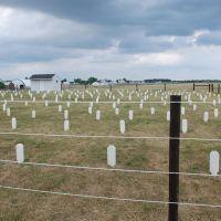 Amish Cemetery, Грабилл