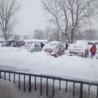 More Snow, Гриффит