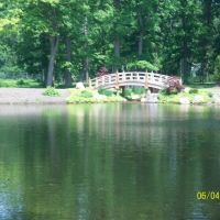 Swan Pond & Oriental Bridge in Wellfield Botanic Garden; Elkhart, IN, Елкхарт