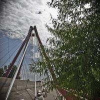 Bridge, Колумбус
