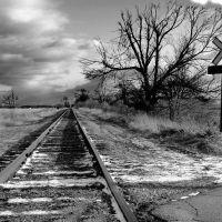 Grey Tracks, Мадисон