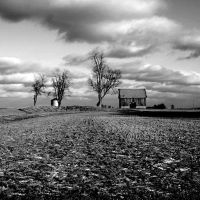 Hoosier Greyscape, Мадисон