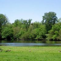 Killbuck Creek, Мадисон