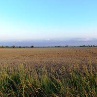 Farm, Мадисон
