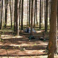 Charles C Deam Wilderness Camp Site, Меридиан Хиллс