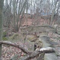Behind Cressmoor, Нью-Чикаго