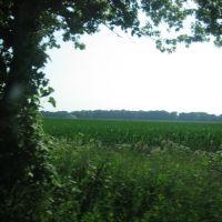 Corn Field In Indiana, Саут-Хейвен