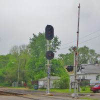 Type D Signals, Хаммонд