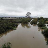 Azusa CA San Gabriel River Azusa CA, Азуса