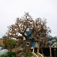 Chip n Dale Treehouse, Анахейм