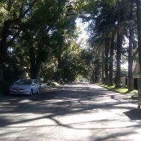 Street in Ontario, CA, Апленд