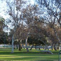 Arcadia County Park, Аркадиа