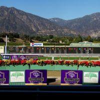 Santa Anita Race Track, Аркадиа