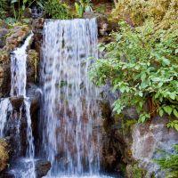 Meyberg Waterfall - LA County Arboretum, Аркадиа