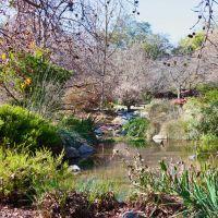 LA County Arboretum, Аркадиа