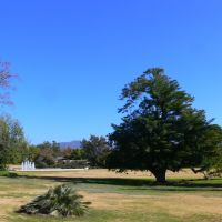The Arboretum of Los Angeles County, California, Аркадиа