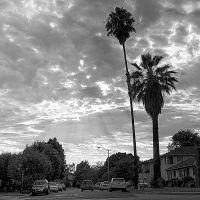 Santa Anita Ave. • Arcadia, Аркадиа